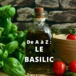 Fiche technique du Basilic en vidéo