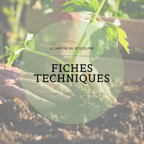 Fiche technique sur les légumes